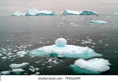 Arctic ocean brash ice, with icebergs in the distance on the coast of western Greenland. The salt sea, at freezing point is glazed with icy sheets reflecting the snow-laden sky.