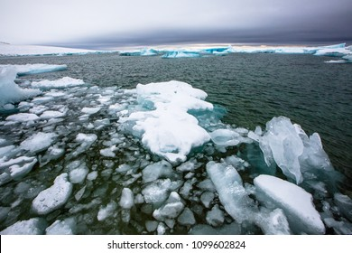 Arctic Ocean Sea Ice