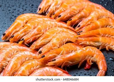 Arctic shrimp on the black background