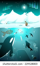 Arctic underwater marine life on the north or south pole among icebergs with fishing eskimo and whale, fish, penguins, seal under the water, in a cold freezing night