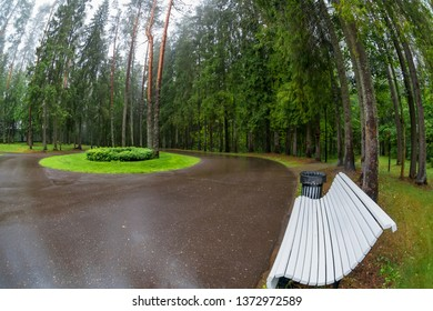 The area in the park with a bench for seating and recreation