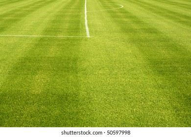 Area white lines on football green grass field