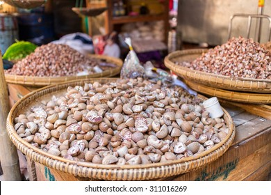 The areca nut  is the seed of the areca palm