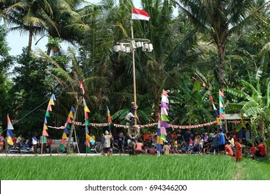 Areca tree climbing (Panjt Pinang) competition in the Indonesian independence day. Yogyakarta, 17 august 2016.
