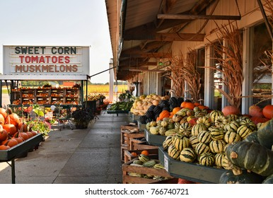 Arena Town, Wisconsin, USA - September 13, 2017: Farm market along Highway 14 near Arena Town, Wisconsin, United States that sales farm fresh produce and pumpkins for Halloween.