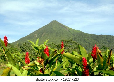 Arenal Volcano in Costa Rica with Red Flowers