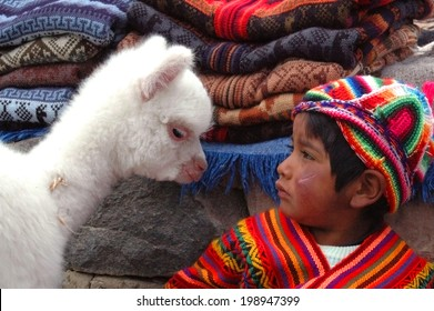 AREQUIPA, PERU - JANUARY 6: Unidentified Quechua little boy in traditional clothing with baby llama on January 6, 2008 in Arequipa, Peru.