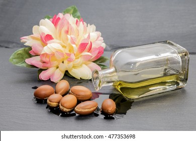 Argan oil and seeds . The liquid gold of Morocco .