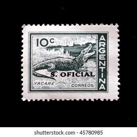 ARGENTINA - CIRCA 1940s: A stamp printed in Argentina shows crocodile, circa 1940s