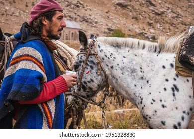 Argentine Gaucho with his horses