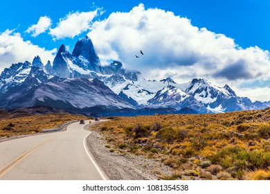 Argentine Patagonia. Summer day in February. Fine highway to the majestic Mount Fitz Roy. The concept of active and extreme tourism. The huge black Andean condors hover over the prairie