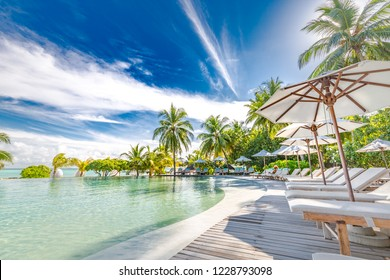 Ari Atoll, Maldives: 07.05.2018 - Swimming pool of luxury hotel or tropical resort. Palm trees and infinity pool at the beach. Amazing tranquil and relaxation pool and lounge scene