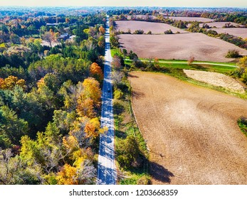 Arial veiw of rural road, fields and autumn trees. Drone shot