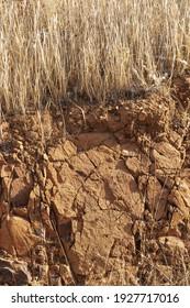 Tierras áridas y secas en verano en un campo andaluz en el sur de España
