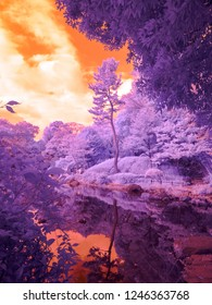 Arisugawa Park, Tokyo, Japan. Extended infrared. Taken with a full spectrum modified Lumix. All light recorded is just outside the range of the human eye.