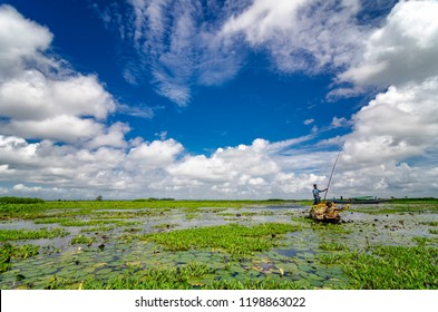Ariyal Beel, Dhaka, Bangladesh - 7/14/2017  Ariyal beel is the largest remaining wetland close to Dhaka,Bangladesh. It is home to many flora and fauna. Locals seen here collecting Nymphaeaceae flower.