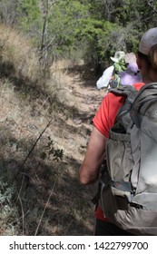 Ariz. / US - May 24, 2014: Volunteers from the humanitarian group Samaritans hike in southern Arizona to drop water and look for people injured by the dangerous terrain.