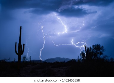 Arizona Lightning With Saguaro Cactus
