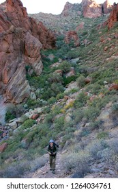 Arizona, USA - 27 Nov 2009:  Climbing the mountains in a rocky desert against the sky, photographing wildlife
