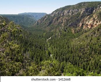Arizona's Oak Creek Canyon from the Mogollon Rim