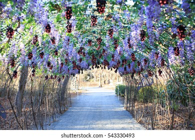 Arkansas, USA On 20 DECEMBER 2016: Decoration In Garvan Woodland Garden