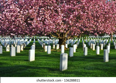 Arlington National Cemetery, Washington DC, USA