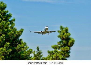 Arlington, Virginia / USA - September 11, 2019: A Jet Blue regional aircraft is framed by a pine tree as it prepares to land at Ronald Reagan Washington National Airport near Washington, D.C.
