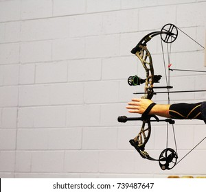 Arm of male archer uses compound bow to aim arrow at unseen target. Developed in the 1960s compound bow components are riser, limbs, cams or wheels, and string or cable assembly.
