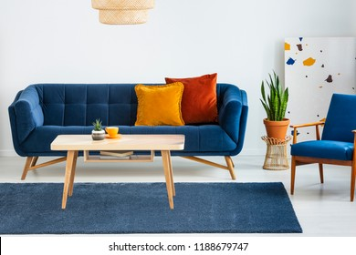Armchair next to blue sofa with cushions and wooden table in flat interior with plant. Real photo
