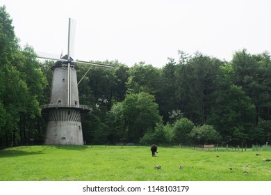 Arnhem, Netherlands - May 2018: white big wind mills in the top of a grass field at Arnhem open air and national heritage museum.
