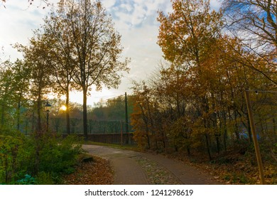 ARNHEM, NETHERLANDS - NOVEMBER 23, 2018- Typical dutch cobbled path during sunset at the day in the fall in the Open air museum in Arnhem, Netherlands