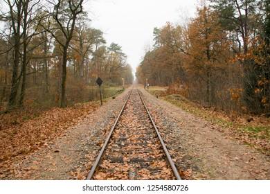 ARNHEM, NETHERLANDS - NOVEMBER 24, 2018: Train tracks with a railroad crossing on the background in Arnhem, Netherlands