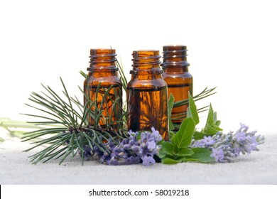 Aromatherapy Aroma Scented Oil in Glass Bottles with Lavender, Pine and Mint