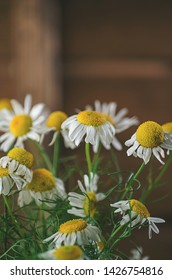 Aromatherapy by herbs camomile, medicine