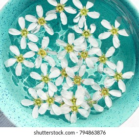 Aromatherapy herbal detox bath. White petals sunny water light blue teal creamic bowl, viewed above.
