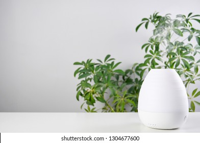 Aromatherapy at home. Ultrasonic Oil diffuser on white table of schefflera plant background. Close up view with copy space
