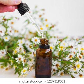 Aromatherapy oil, wild chamomille oil bottle and dropper, essential oil extract and spa concept