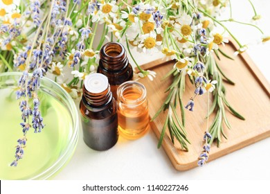 Aromatherapy set with different holistic fresh herbs and extracts, bottles and flowers, soft natural light.
