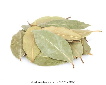 Aromatic bay leaves. Isolated on white background