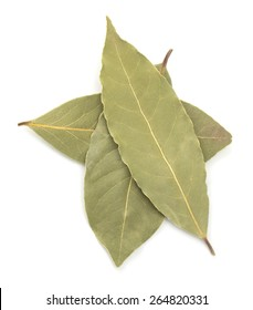 Aromatic bay leaves isolated on white background