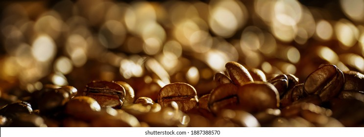 aromatic coffee beans on blurred background, beautiful macro of fresh roasted coffee beans with copy space