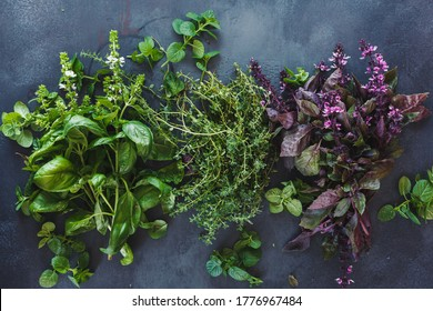 Aromatic herbs on dark background. Fresh green and red basil leaves and flowers , thyme  and mint leaves. Flat lay  - Shutterstock ID 1776967484