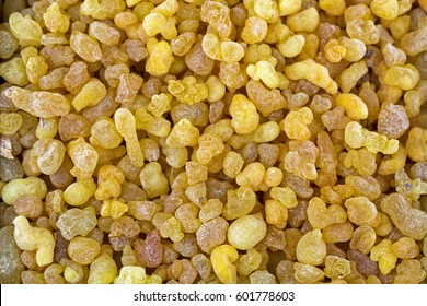 Aromatic yellow resin gum from Sudanese Frankincense tree, Closeup texture of incense made by slashing bark of Boswellia sacra tree in Etiopia (Boswellia Papyrifera)