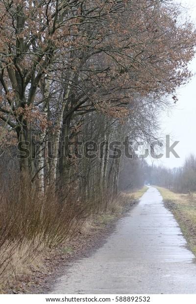 Around the nature reserve pennigbuetteler moor in osterholz-scharmbeck at winter time