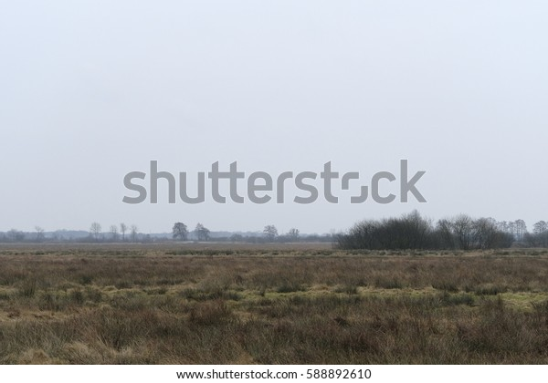 Around the nature reserve pennigbuetteler moor in osterholz-scharmbeck at winter time