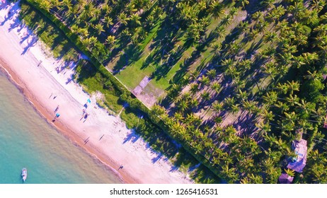 Arraia d'Ajuda, Bahia, Brazil: Aerial view of a beautiful beach with crystal water. Fantastic landscape. Great beach view.  Palm tree,  travel, destination, vacation, tropical. Boat sailing.