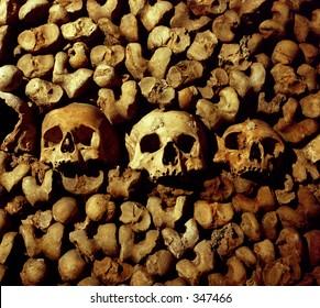 Arranged human skulls and bones in a catacomb