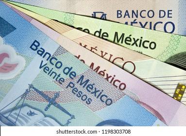 Arrangement of assorted mexican peso bills.