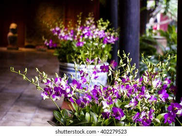 Arrangement of fresh purple flowers at Jim Thompson House in Bangkok, Thailand.