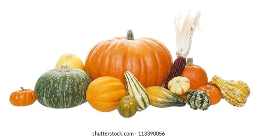 An arrangement of freshly harvested pumpkins, squashes, and gourds.  Shot on white background.